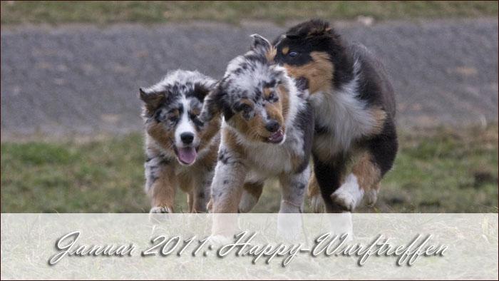 2011-01-Happy-Wurftreffen