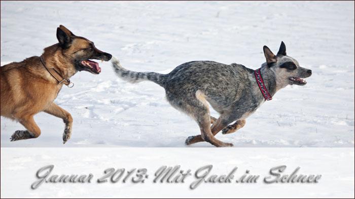2013-01-jack-schnee