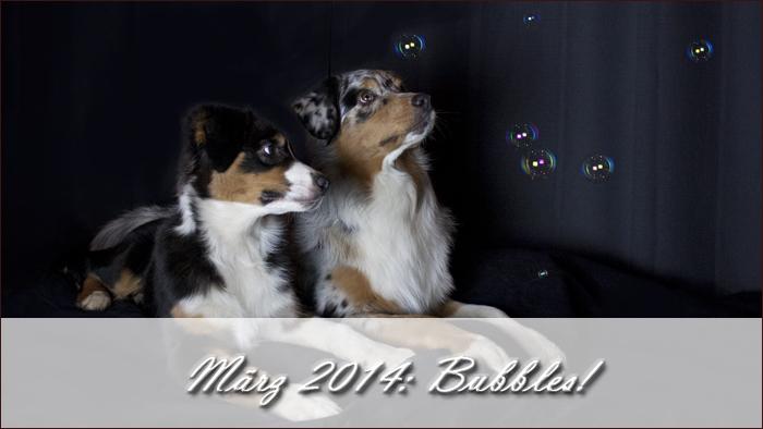 2014-03-bubbles
