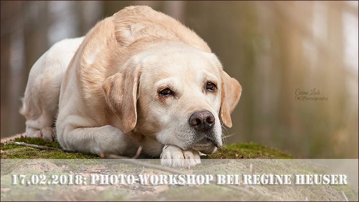 startbild_workshop_regine_heuser